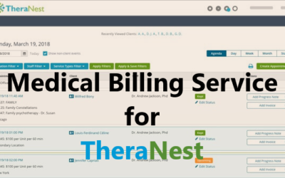 Medical Billing Service for TheraNest
