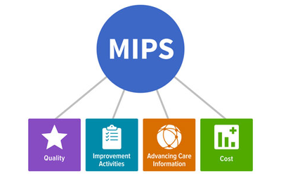 How MIPS work and why it is important?