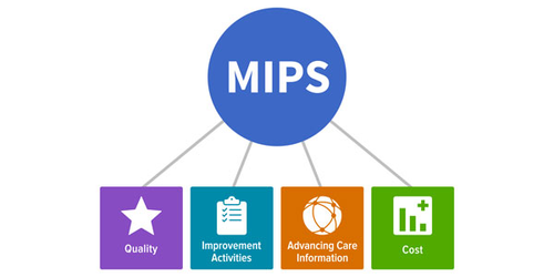How does MIPS work